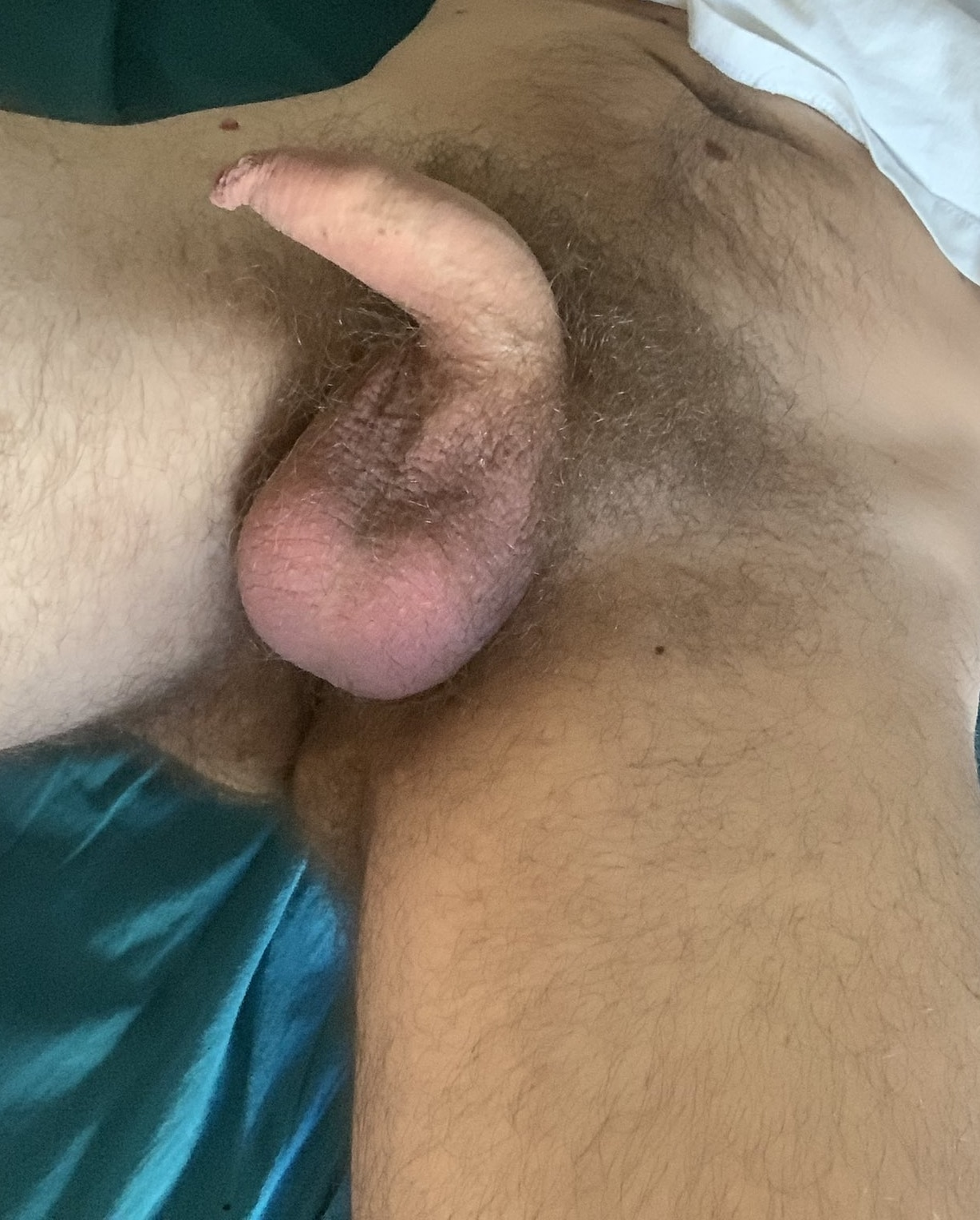 Soft penis with foreskin